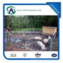 Economy Hog Panels/Sheep Panels