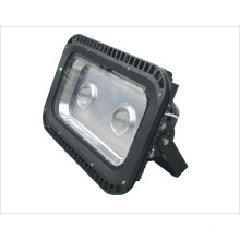 2 años de garantía Chip + Constant LED Floodlight