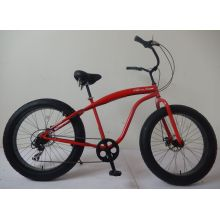 New Developed Popular Beach Bicycle Fat Tire Bike (FP-BCB-FAT02)