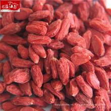 Nueva llegada precio al por mayor himalaya productos-goji