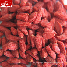New arrival wholesale price himalaya products-goji