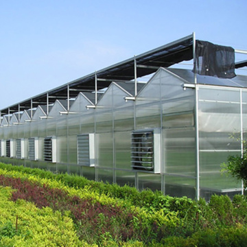 Velon PC Board Multi-Span Greenhouse