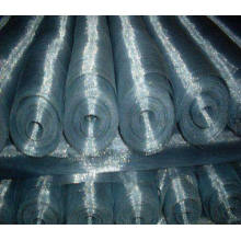 Galvanized Mosquito Screen/Galvanized Window Screens