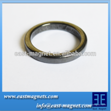 epoxy resin ring Ferrite Magent