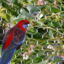 HDPE Anti Bird nets