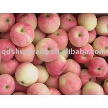 Klasse A roter Gala-Apfel