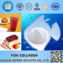 Fish collagen protein