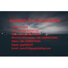 Zhanjiang Baoman Sea Freight to Sweden Helsingborg