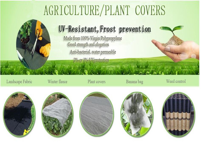 UV+Protect+Agriculture+Spunbond+Nonwoven+Fabric