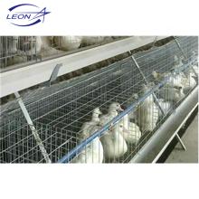 Gaiola de camadas da série Leon para pato de carne