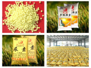 Supplying China Urea