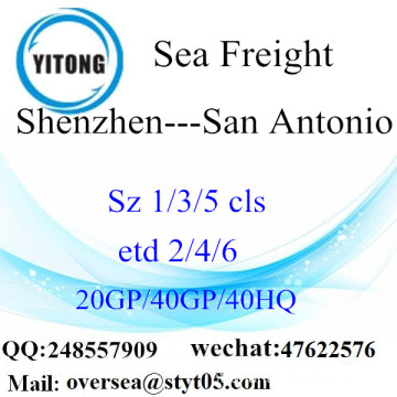 Shenzhen Port Sea Freight Shipping para San Antonio