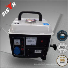 BISON (CHINA) Générateur d'essence à vendre Générateur pour maison avec faible bruit