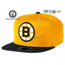 Nouveau chapeau adapté aux besoins du client de broderie de la broderie 100% acrylique de la conception 3D d'ère