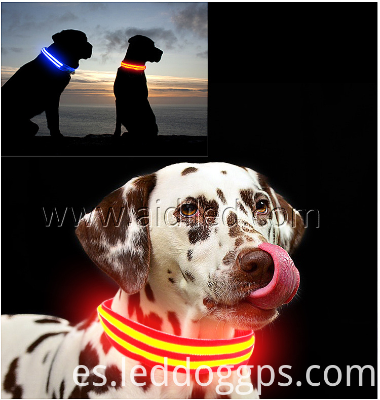 Rechargeable Lighted Dog Collars
