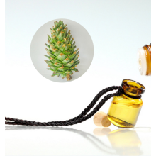 Good Quality for Pine Needle Essential Oil Pine cone or palta essential oil daily chemical export to Spain Exporter