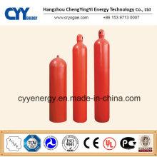 Nahtlose Stahlfeuerbekämpfung Druckgasflasche mit verschiedenen Kapazitäten