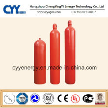 Seamless Steel Fire Fighting Compressed Gas Cylinder with Different Capacities