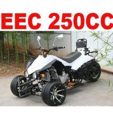 250CC RACING TRIKES ZU VERKAUFEN (MC-380)
