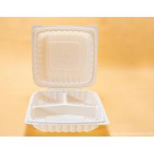 Einweg-Lunchbox tragbar