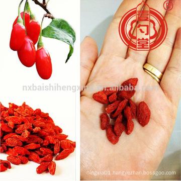 China wolfberry lycium barbarum organic goji berry for sale