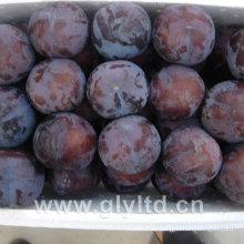 Chinesische frische süße schwarze Pflaume
