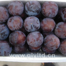 Chinese Fresh Sweet Black Plum