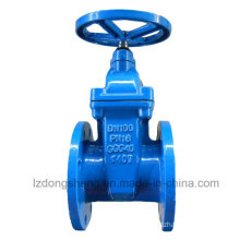 Cast/Ductile Iron Rising Stem Gate Valve