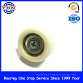 High Quality and Most Popular Plastic Deep Groove Ball Bearing (BSL 6X26X10)