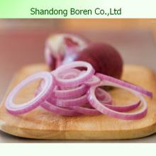 Export 2015 Chinesische frische Zwiebel Original Zwiebeln
