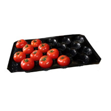 39X59cm SGS Recyclé Fruit PP Plateau