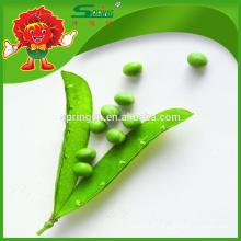 Gousse chinoise de pois frais vert