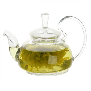 China New Product for Glass Tea Cups 17.5oz Glass Teapot with Glass Infuser export to Monaco Exporter