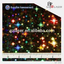 Hologramm geprägte nikel Metall-Scheibe Platte