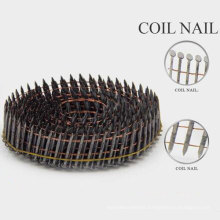 Hot Selling Plastic Coil Nails From China