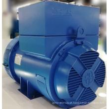 Regulador de tensão manual do gerador marinho EvoTec