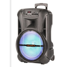 15inch Outdoor Portable Speaker With Wireless Mic