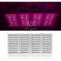 Hydroponika 5W LED Grow Light