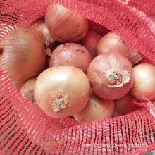 Bonne qualité de l'oignon jaune frais chinois (5-7cm)