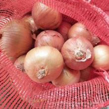 Хорошее качество китайский свежий желтый лук (5-7см)