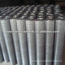 heavy gauge Galvanized welded wire mesh