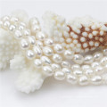 60inches lange natürliche reale Frauen Süßwasserperlen-Halskette
