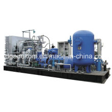 Low Pressure Reciprocating Piston Nactural Gas CNG Compressor (Kdw-80/2