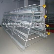 battery design chicken cage in chicken house