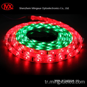 Festival LED şerit SMD5050