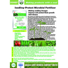 Fabrication Fertilisant microbien de semences