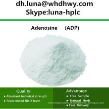 CAS: 58-64-0 para Pesquisa Biológica e Química ADP / Adenosina