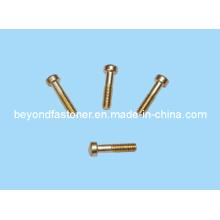 Bronze Schrauben Messing Schraube Kupfer Schraube / Spezialverschluss