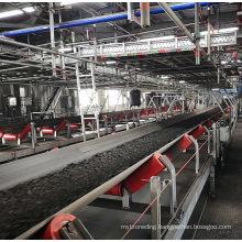 Ske Power Plant Conveyor System / Belt Conveyor / Pipe Closed Conveyor