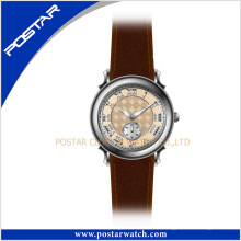 Psd-2247 Mode Quarz Uhren für Frauen Fabrikuhren